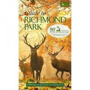 Guide to Richmond Park