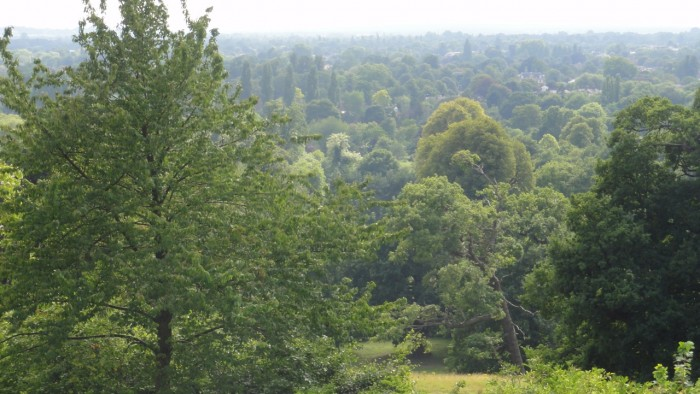 View of Thames Valley from Pembroke Lodge patio