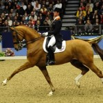 Olympia Horse Show - Activities and Events - My Sheen Village